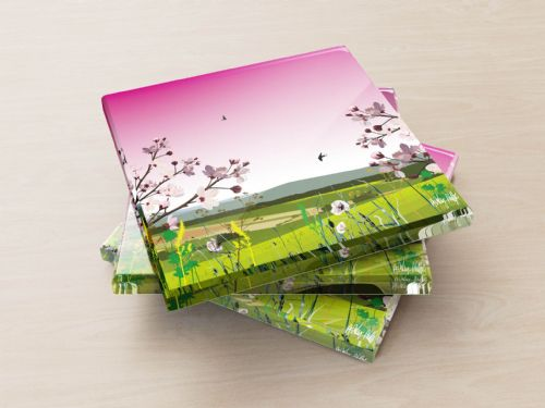 British Countryside Pink - Glass Coasters